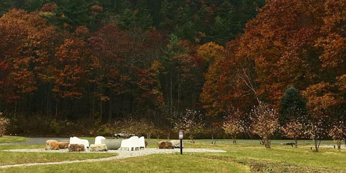Walking in Autumn 500x250 - Briarclif Motel - Great Barrington, MA
