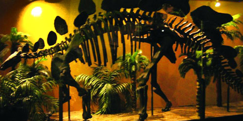 dinosaur museums in western Massachusetts