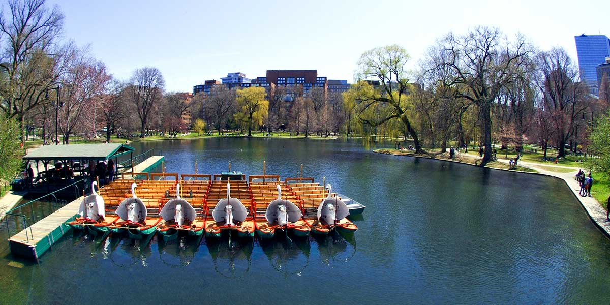 Swan boats lined up at dock public garden - Greater Boston CVB