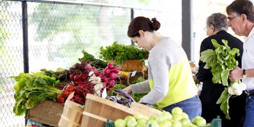 Guide to Massachusetts Farmers Markets