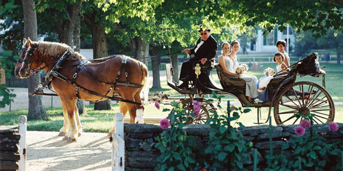 Wedding Carriage - Old Sturbridge Village - Sturbridge, MA