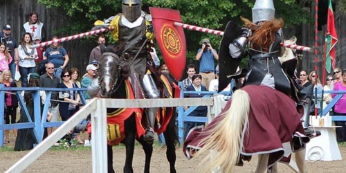 King Richard's Faire in Carver - Plymouth County, MA