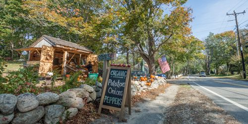 Farmers Markets on Cape Cod, MA
