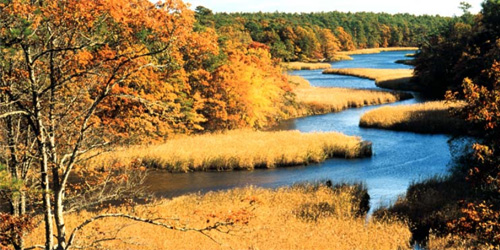 mashpee river reservation