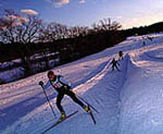 Cross-Country Skiing at the Threshold of the City