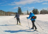Notchview XC Skiing