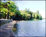 walden pond reservatio